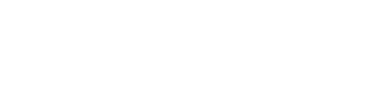 Profigas Logo weiß