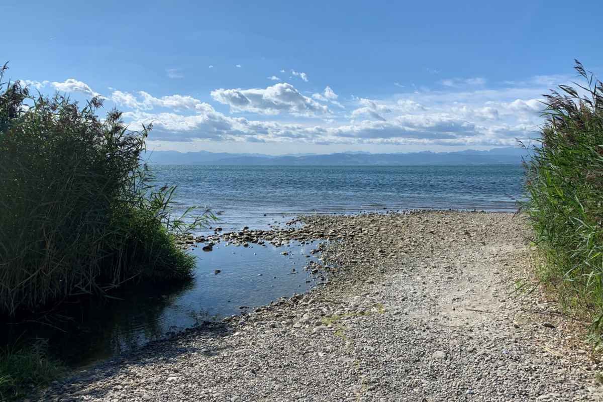 Bodensee Alpen Panorama